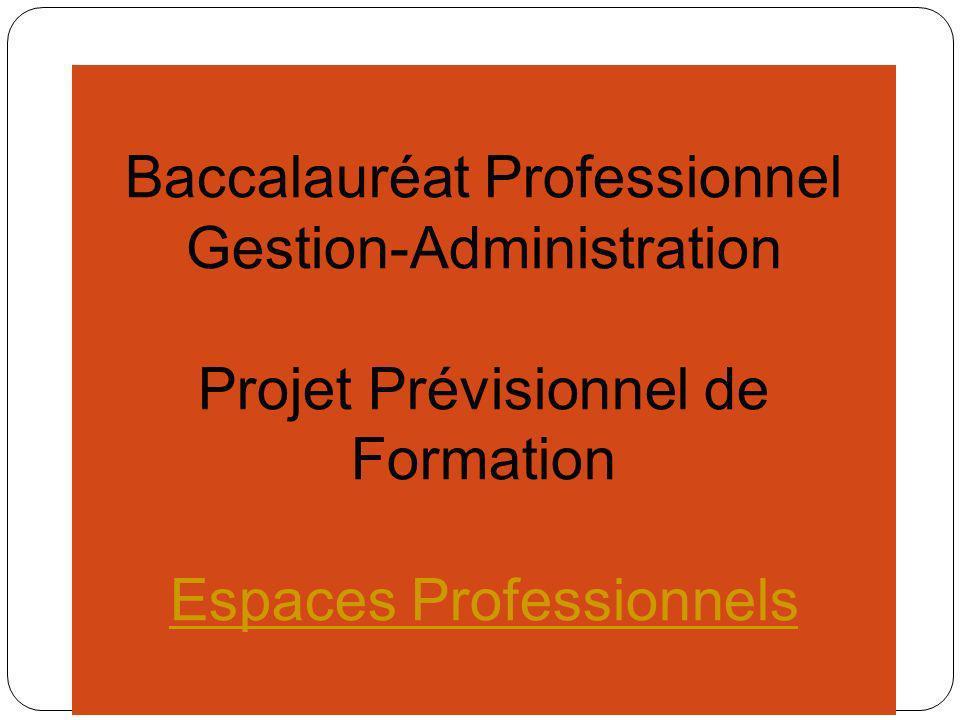 Baccalauréat Professionnel Gestion-Administration Projet Prévisionnel de Formation Environnement Numérique
