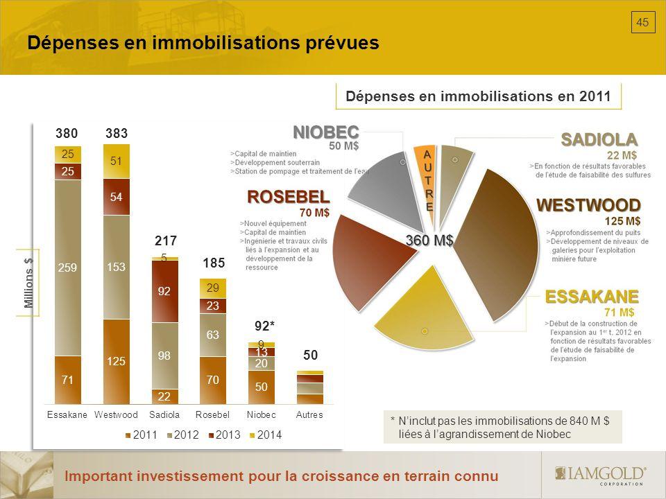 Dépenses en immobilisations prévues Important investissement pour la croissance en terrain connu Dépenses en immobilisations en 2011 * Ninclut pas les