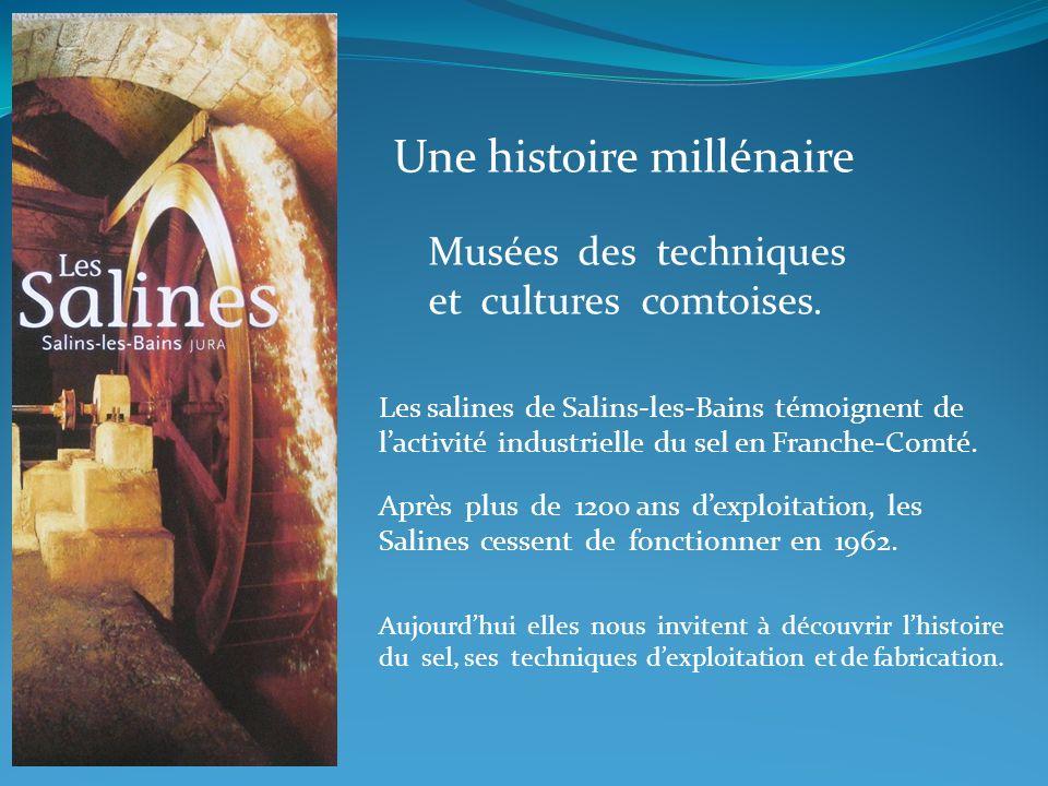 Une histoire millénaire Musées des techniques et cultures comtoises. Les salines de Salins-les-Bains témoignent de lactivité industrielle du sel en Fr