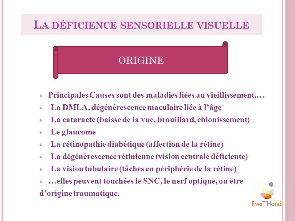 ORIGINE Principales Causes sont des maladies liées au vieillissement,… La DMLA, dégénérescence maculaire liée à lâge La cataracte (baisse de la vue, b