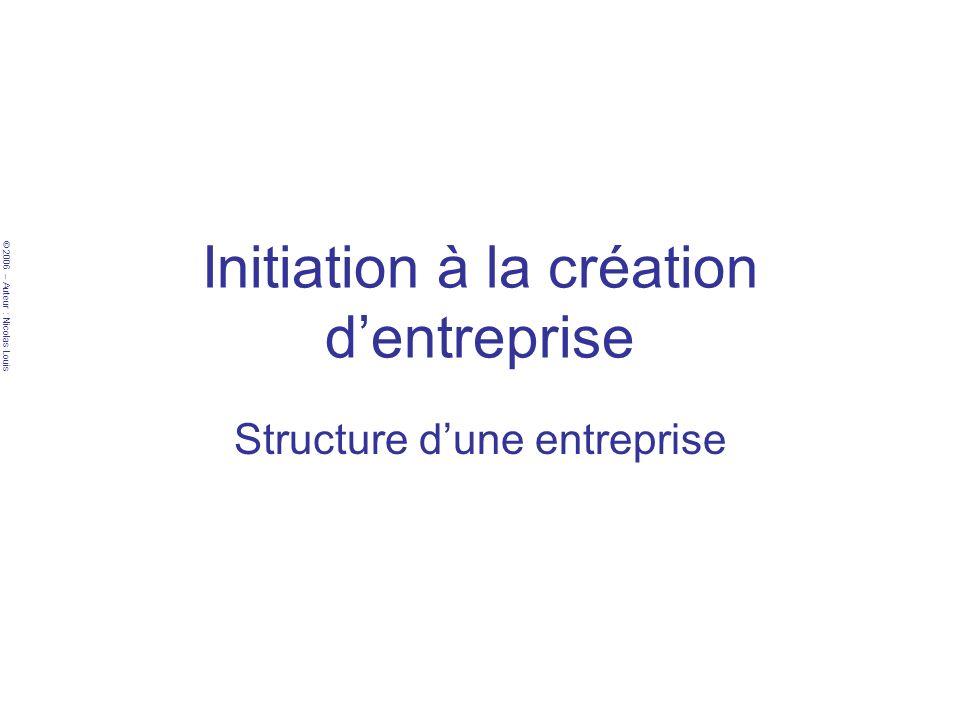 © 2006 – Auteur : Nicolas Louis Structure dune entreprise Services pour commencer –Cela va dépendre de votre stratégie et de ce que vous voulez faire de votre entreprise .