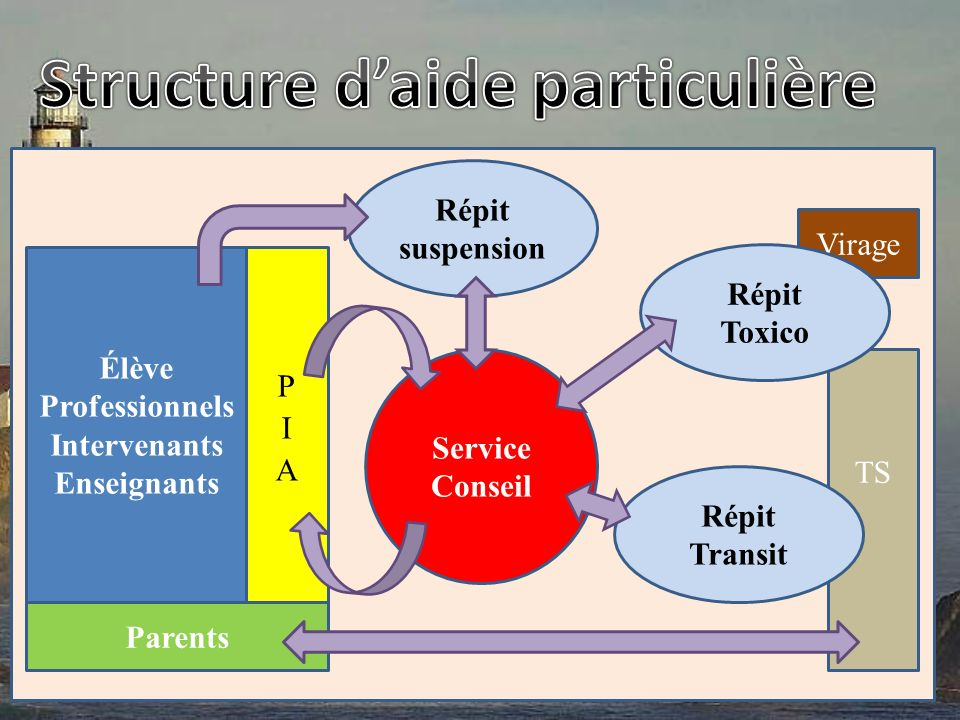 Élève Professionnels Intervenants Enseignants Parents Répit suspension Virage TS Service Conseil Répit Transit Répit Toxico