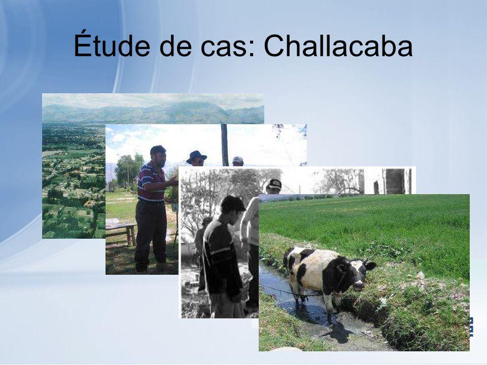 Étude de cas: Challacaba