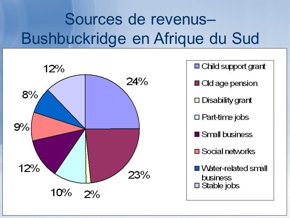 Sources de revenus– Bushbuckridge en Afrique du Sud
