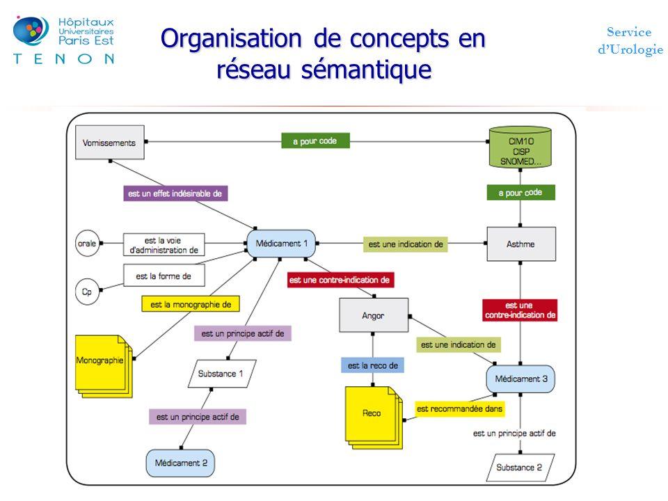 Service dUrologie Organisation de concepts en réseau sémantique