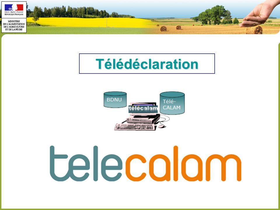 Télédéclaration