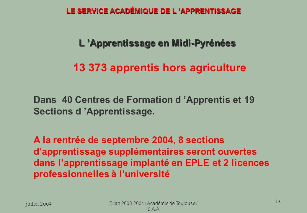 juillet 2004 Bilan 2003-2004 / Académie de Toulouse / S.A.A 13 LE SERVICE ACADÉMIQUE DE L APPRENTISSAGE L Apprentissage en Midi-Pyrénées 13 373 apprentis hors agriculture Dans 40 Centres de Formation d Apprentis et 19 Sections d Apprentissage.