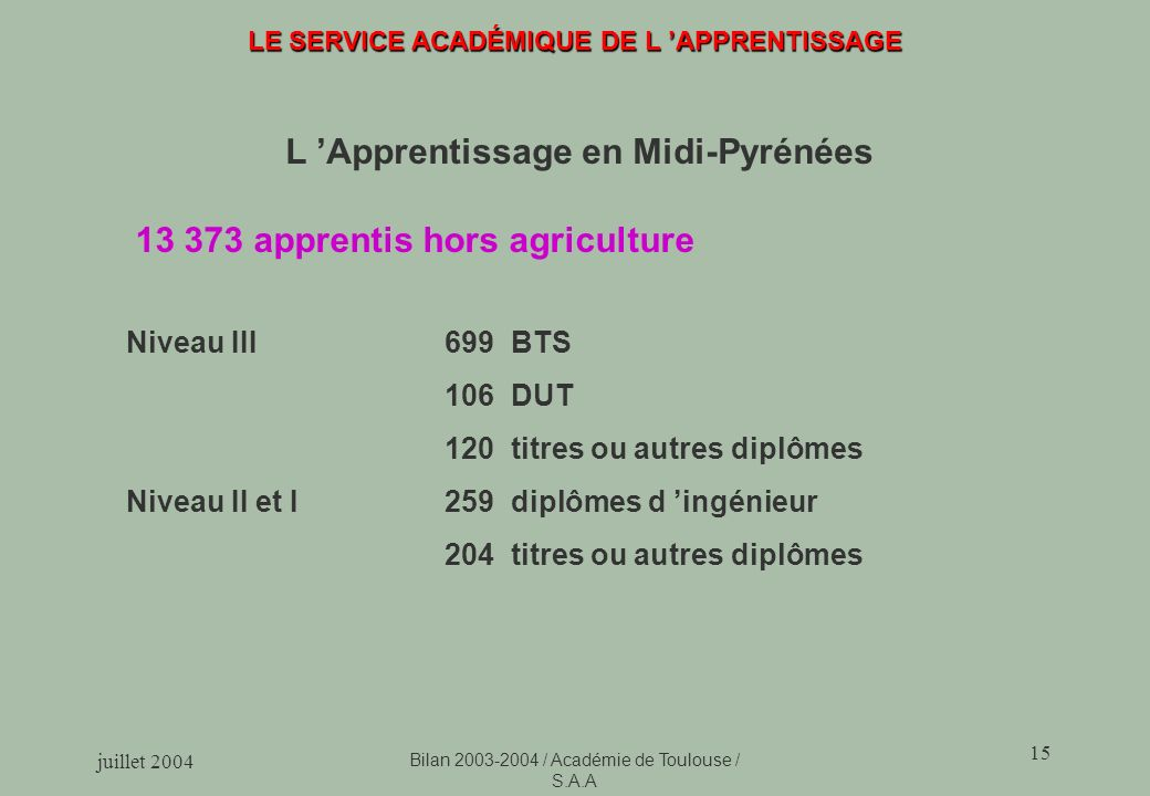 juillet 2004 Bilan 2003-2004 / Académie de Toulouse / S.A.A 15 LE SERVICE ACADÉMIQUE DE L APPRENTISSAGE L Apprentissage en Midi-Pyrénées 13 373 appren