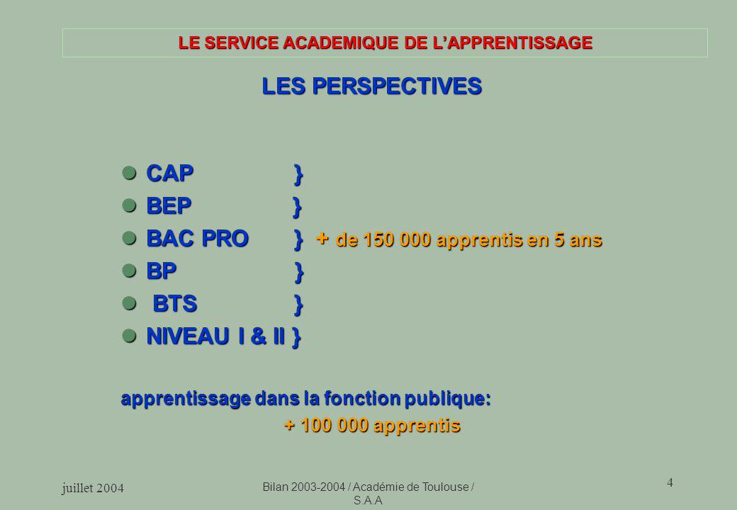 juillet 2004 Bilan 2003-2004 / Académie de Toulouse / S.A.A 4 LE SERVICE ACADEMIQUE DE LAPPRENTISSAGE LES PERSPECTIVES CAP } CAP } BEP } BEP } BAC PRO
