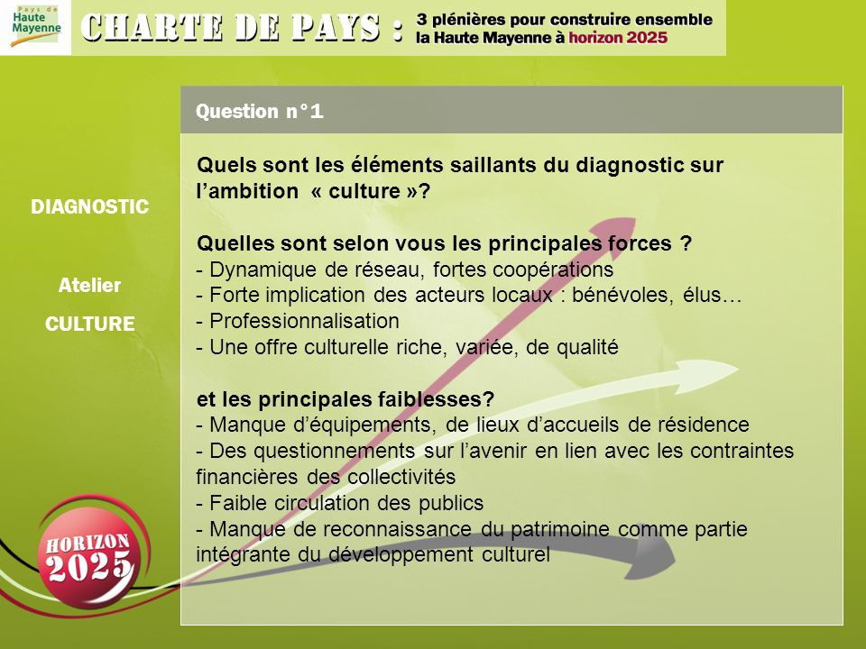 Question n°1 Quels sont les éléments saillants du diagnostic sur lambition « culture ».