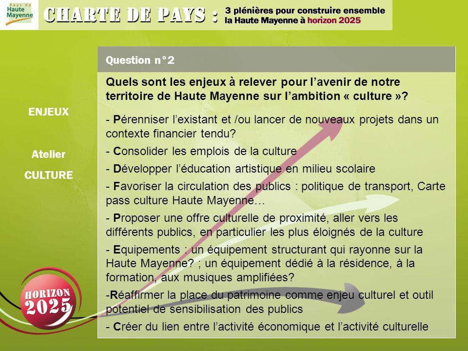 Question n°2 Quels sont les enjeux à relever pour lavenir de notre territoire de Haute Mayenne sur lambition « culture ».