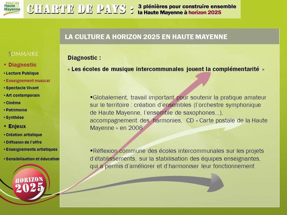LA CULTURE A HORIZON 2025 EN HAUTE MAYENNE Globalement, travail important pour soutenir la pratique amateur sur le territoire : création densembles (lorchestre symphonique de Haute Mayenne, lensemble de saxophones…), accompagnement des harmonies, CD « Carte postale de la Haute Mayenne » en 2008 Réflexion commune des écoles intercommunales sur les projets détablissements, sur la stabilisation des équipes enseignantes, qui a permis daméliorer et dharmoniser leur fonctionnement S OMMAIRE Diagnostic : « Les écoles de musique intercommunales jouent la complémentarité » Diagnostic Lecture Publique Enseignement musical Spectacle Vivant Art contemporain Cinéma Patrimoine Synthèse Enjeux Création artistique Diffusion de loffre Enseignements artistiques Sensibilisation et éducation