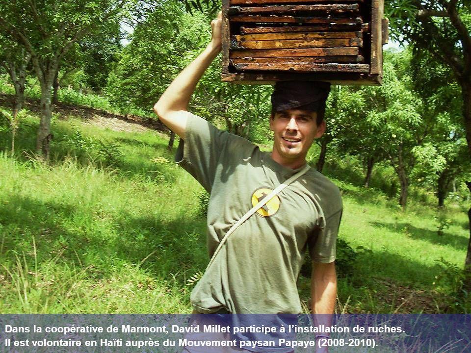 Dans la coopérative de Marmont, David Millet participe à linstallation de ruches. Il est volontaire en Haïti auprès du Mouvement paysan Papaye (2008-2