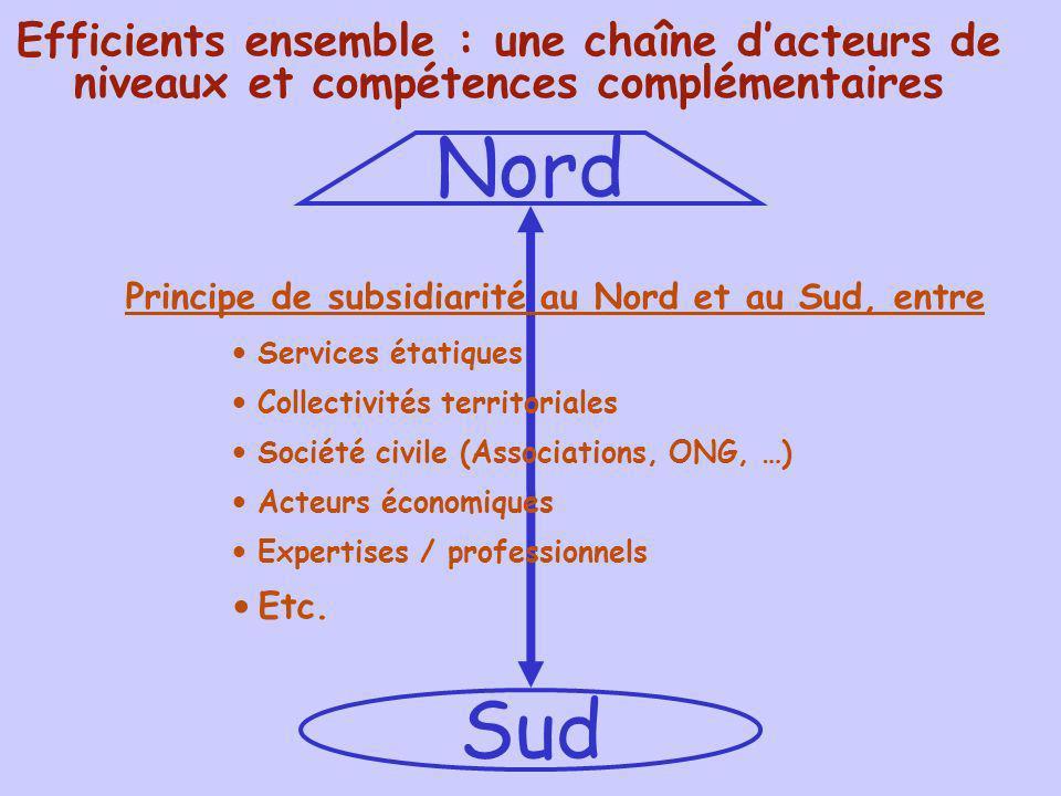 Nord Sud Efficients ensemble : une chaîne dacteurs de niveaux et compétences complémentaires Principe de subsidiarité au Nord et au Sud, entre Service