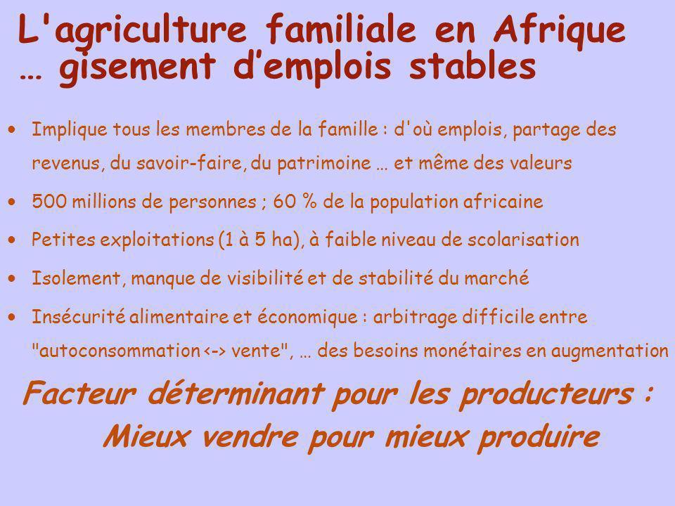 L'agriculture familiale en Afrique … gisement demplois stables Implique tous les membres de la famille : d'où emplois, partage des revenus, du savoir-