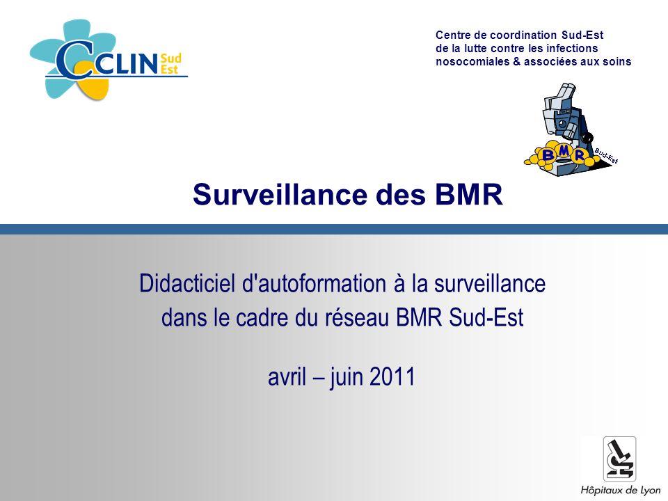 Centre de coordination Sud-Est de la lutte contre les infections nosocomiales & associées aux soins Surveillance des BMR Didacticiel d autoformation à la surveillance dans le cadre du réseau BMR Sud-Est avril – juin 2011