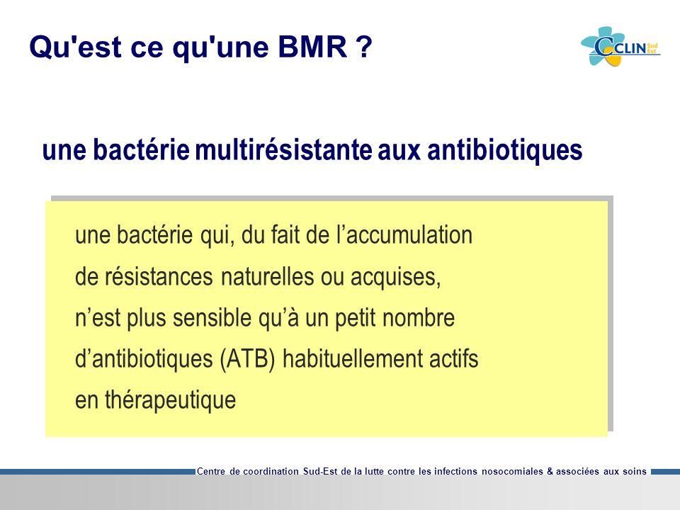 Centre de coordination Sud-Est de la lutte contre les infections nosocomiales & associées aux soins Qu'est ce qu'une BMR ? une bactérie multirésistant