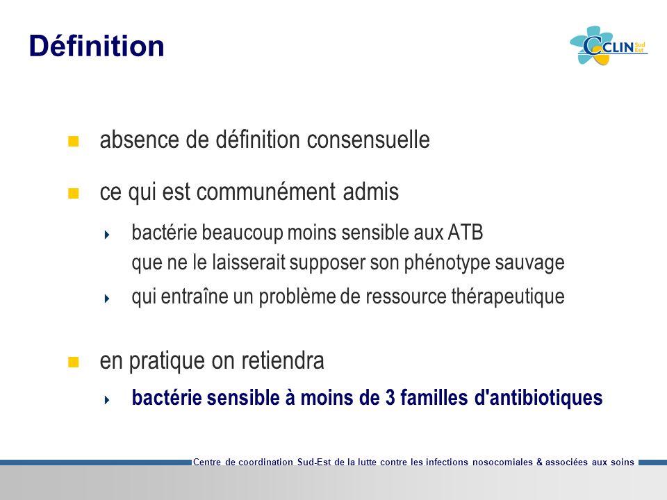 Centre de coordination Sud-Est de la lutte contre les infections nosocomiales & associées aux soins Définition absence de définition consensuelle ce q