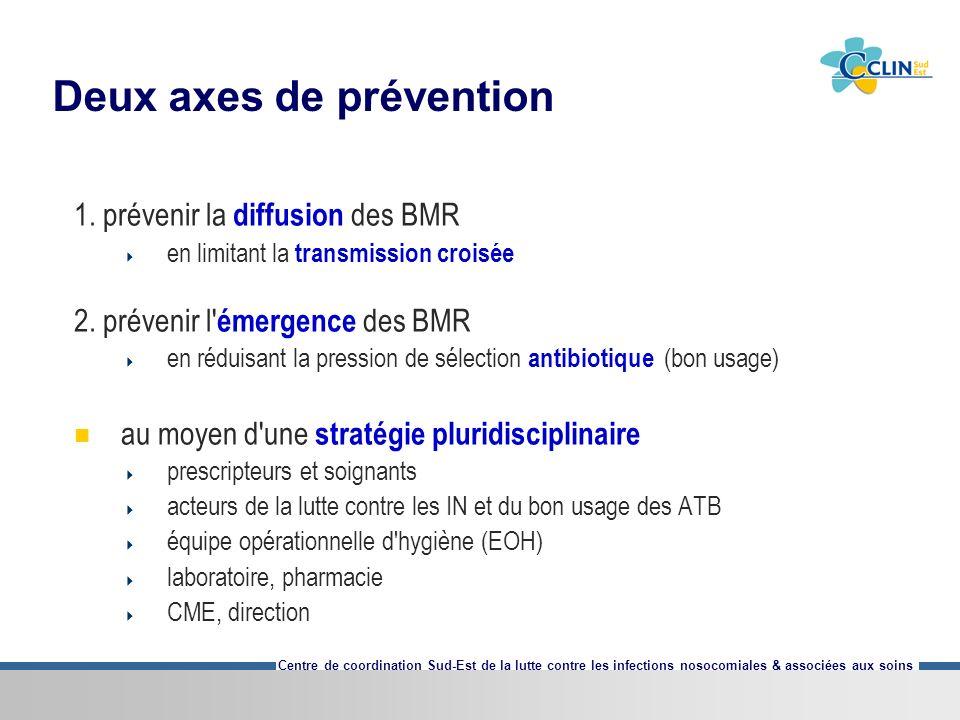 Centre de coordination Sud-Est de la lutte contre les infections nosocomiales & associées aux soins Deux axes de prévention 1. prévenir la diffusion d
