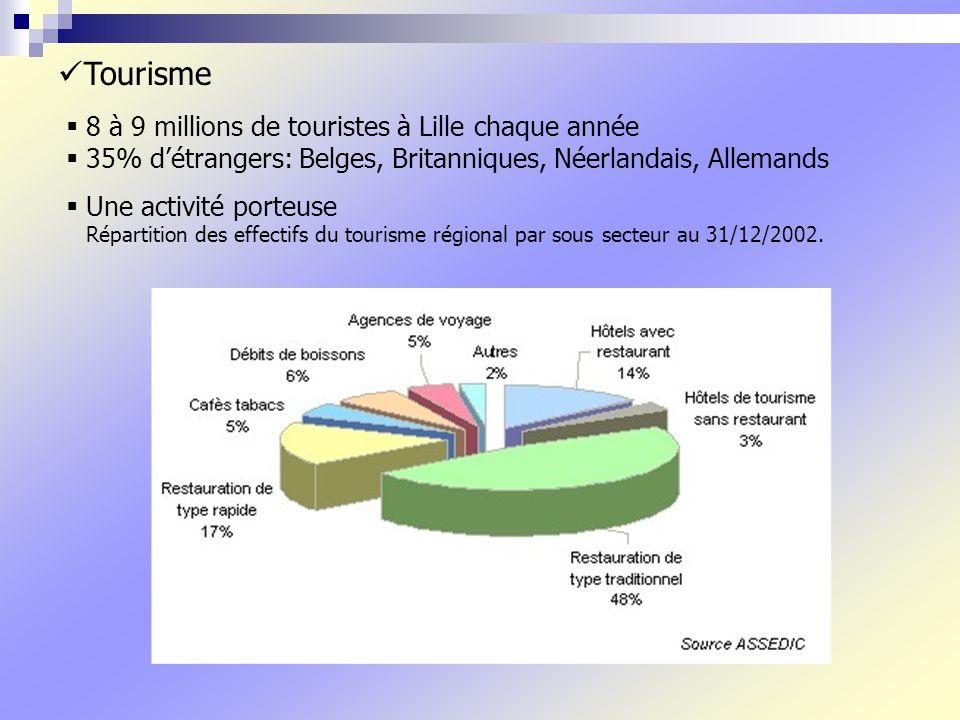 8 à 9 millions de touristes à Lille chaque année 35% détrangers: Belges, Britanniques, Néerlandais, Allemands Une activité porteuse Répartition des effectifs du tourisme régional par sous secteur au 31/12/2002.