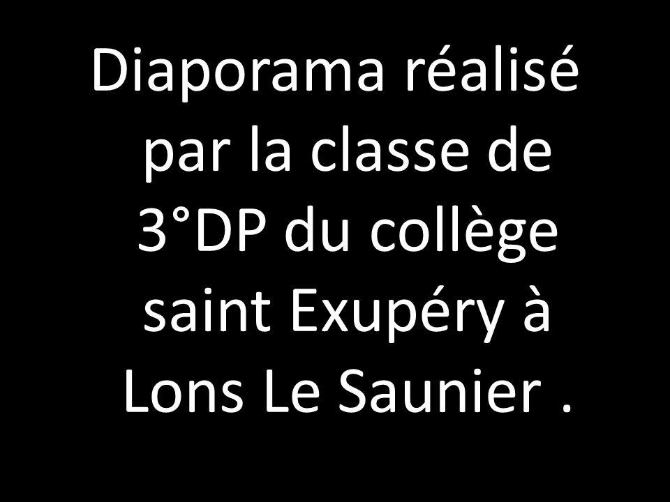 Diaporama réalisé par la classe de 3°DP du collège saint Exupéry à Lons Le Saunier.