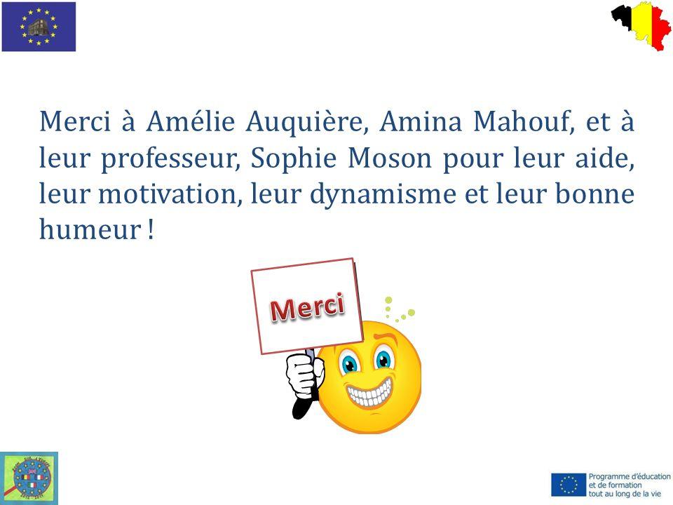 Merci à Amélie Auquière, Amina Mahouf, et à leur professeur, Sophie Moson pour leur aide, leur motivation, leur dynamisme et leur bonne humeur !