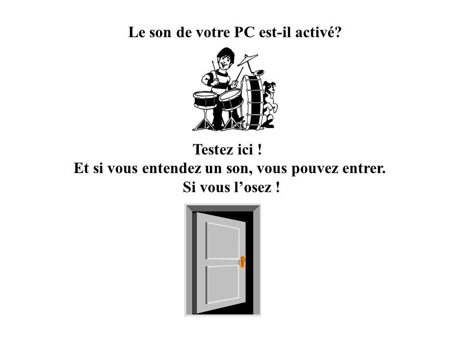 Le son de votre PC est-il activé.Testez ici . Et si vous entendez un son, vous pouvez entrer.