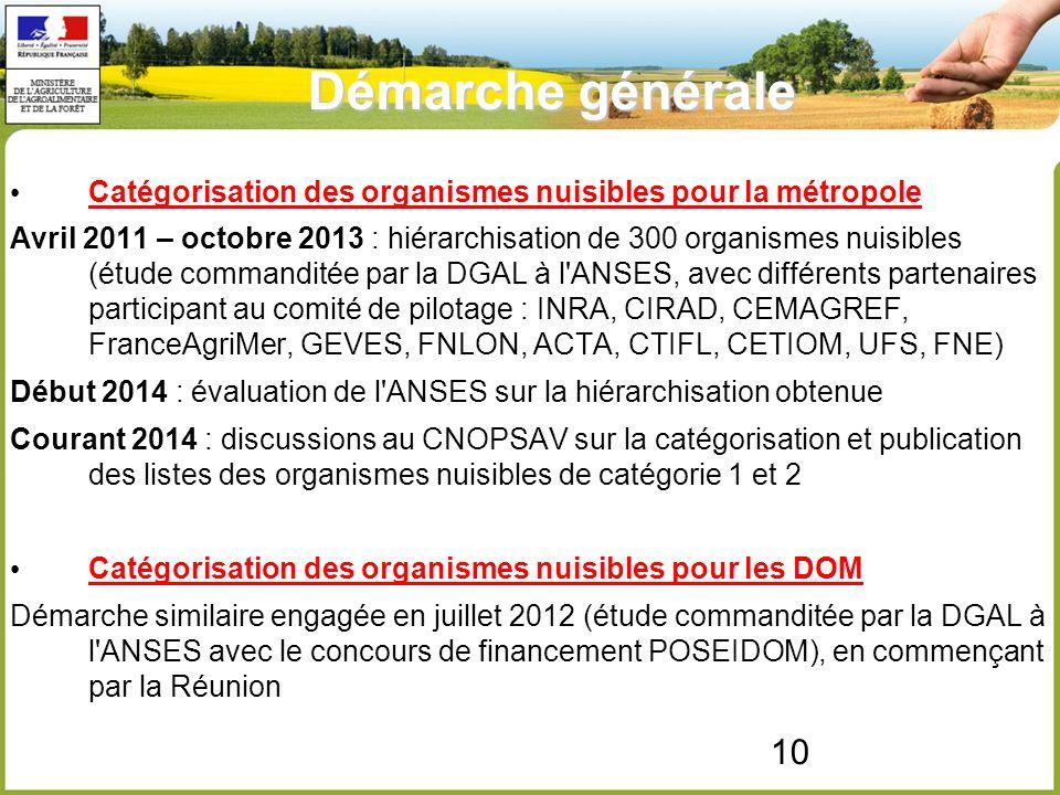10 Démarche générale Catégorisation des organismes nuisibles pour la métropole Avril 2011 – octobre 2013 : hiérarchisation de 300 organismes nuisibles (étude commanditée par la DGAL à l ANSES, avec différents partenaires participant au comité de pilotage : INRA, CIRAD, CEMAGREF, FranceAgriMer, GEVES, FNLON, ACTA, CTIFL, CETIOM, UFS, FNE) Début 2014 : évaluation de l ANSES sur la hiérarchisation obtenue Courant 2014 : discussions au CNOPSAV sur la catégorisation et publication des listes des organismes nuisibles de catégorie 1 et 2 Catégorisation des organismes nuisibles pour les DOM Démarche similaire engagée en juillet 2012 (étude commanditée par la DGAL à l ANSES avec le concours de financement POSEIDOM), en commençant par la Réunion