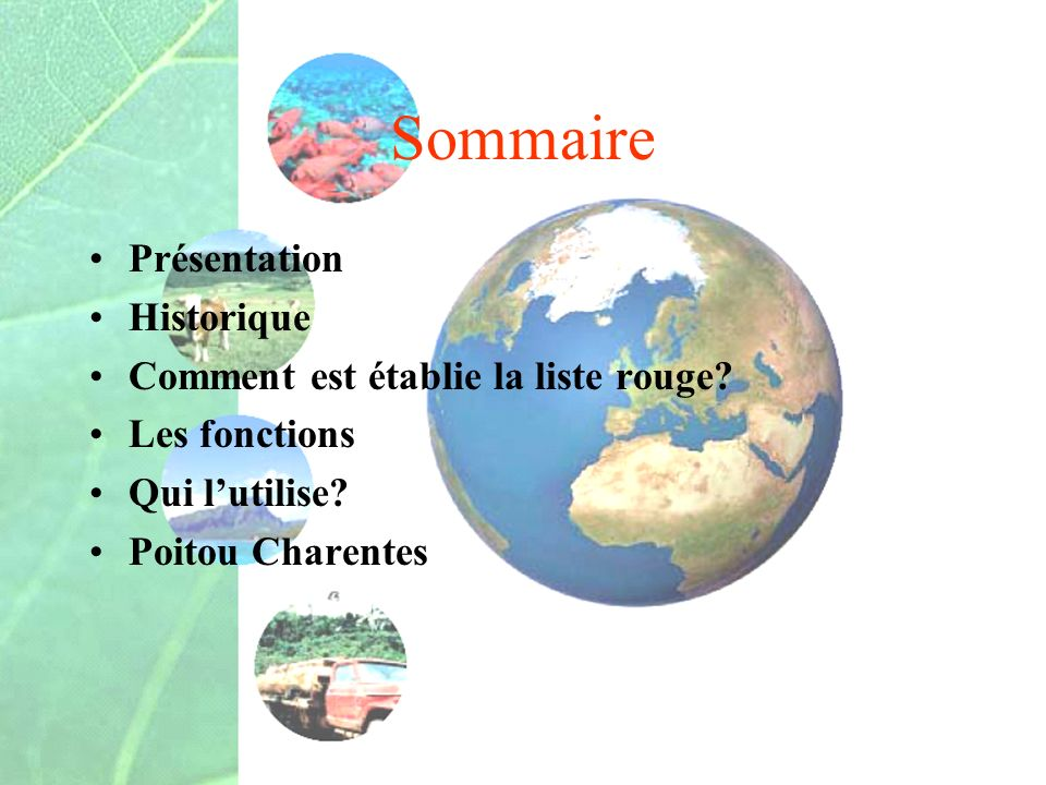 Sommaire Présentation Historique Comment est établie la liste rouge? Les fonctions Qui lutilise? Poitou Charentes