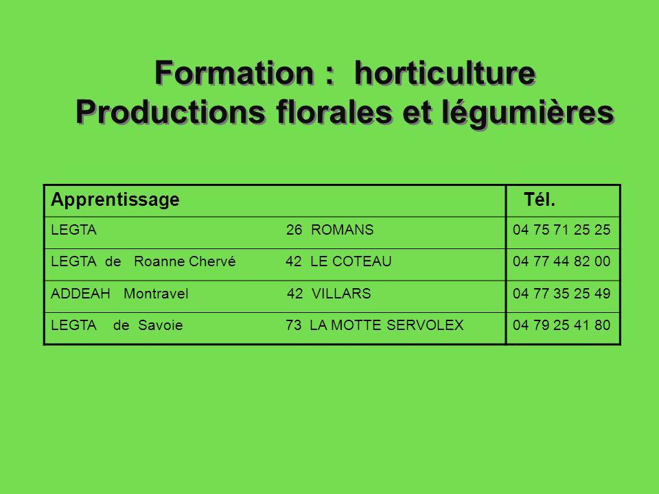 Formation : horticulture Productions florales et légumières Apprentissage Tél. LEGTA 26 ROMANS04 75 71 25 25 LEGTA de Roanne Chervé 42 LE COTEAU04 77