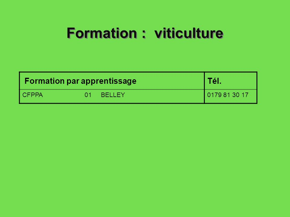 Formation : viticulture Formation par apprentissageTél. CFPPA 01 BELLEY0179 81 30 17