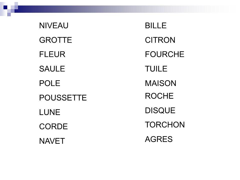 ROCHE DISQUE TORCHON AGRES BILLE CITRON FOURCHE TUILE MAISON POUSSETTE LUNE CORDE NAVET NIVEAU GROTTE FLEUR SAULE POLE