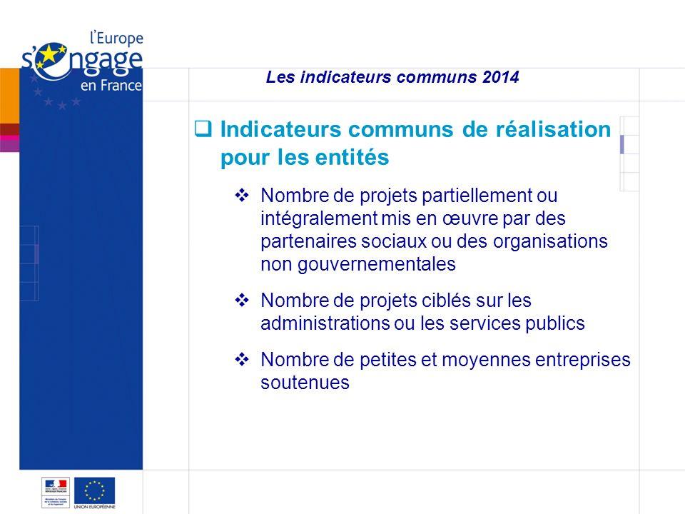 3 3 Les indicateurs communs 2014 Indicateurs communs de réalisation pour les entités Nombre de projets partiellement ou intégralement mis en œuvre par