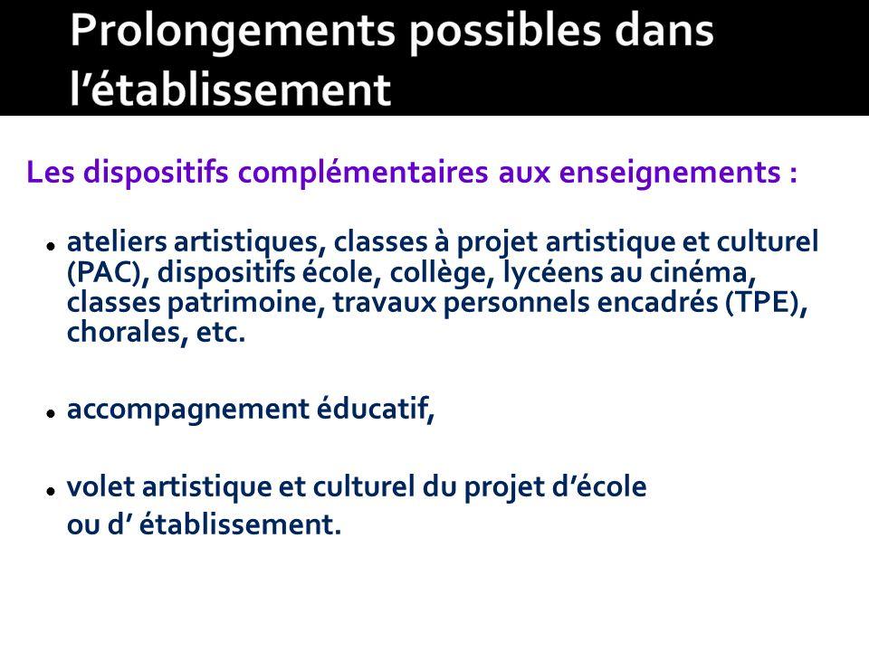 Les dispositifs complémentaires aux enseignements : ateliers artistiques, classes à projet artistique et culturel (PAC), dispositifs école, collège, l