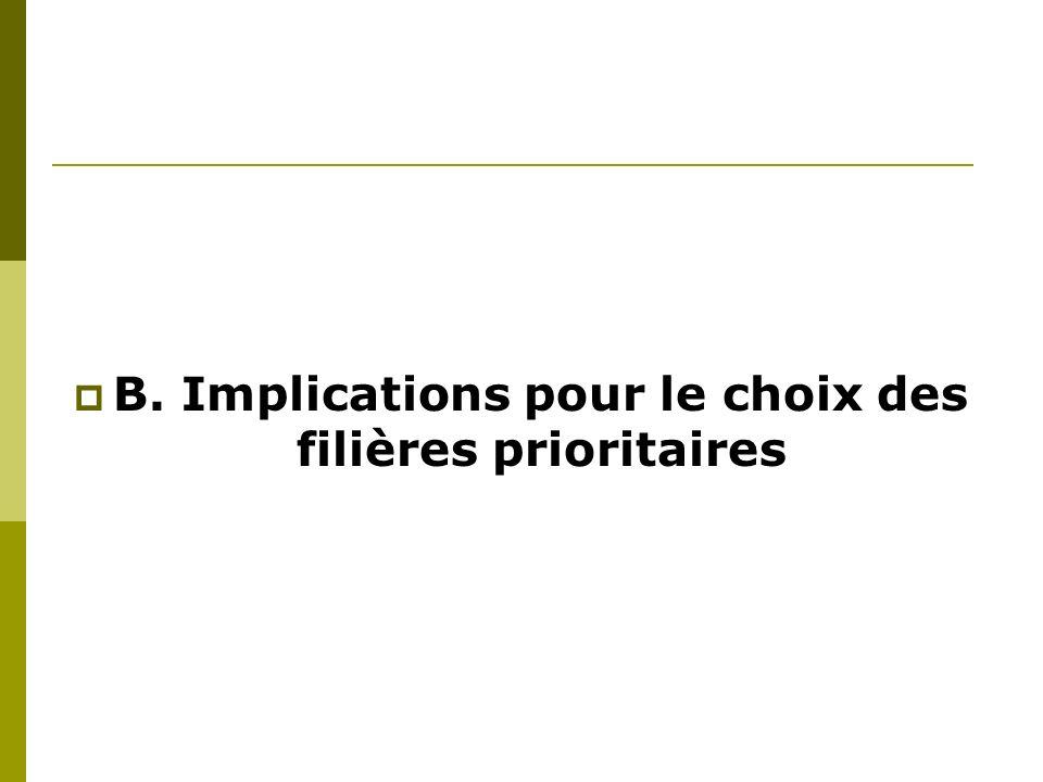 B. Implications pour le choix des filières prioritaires