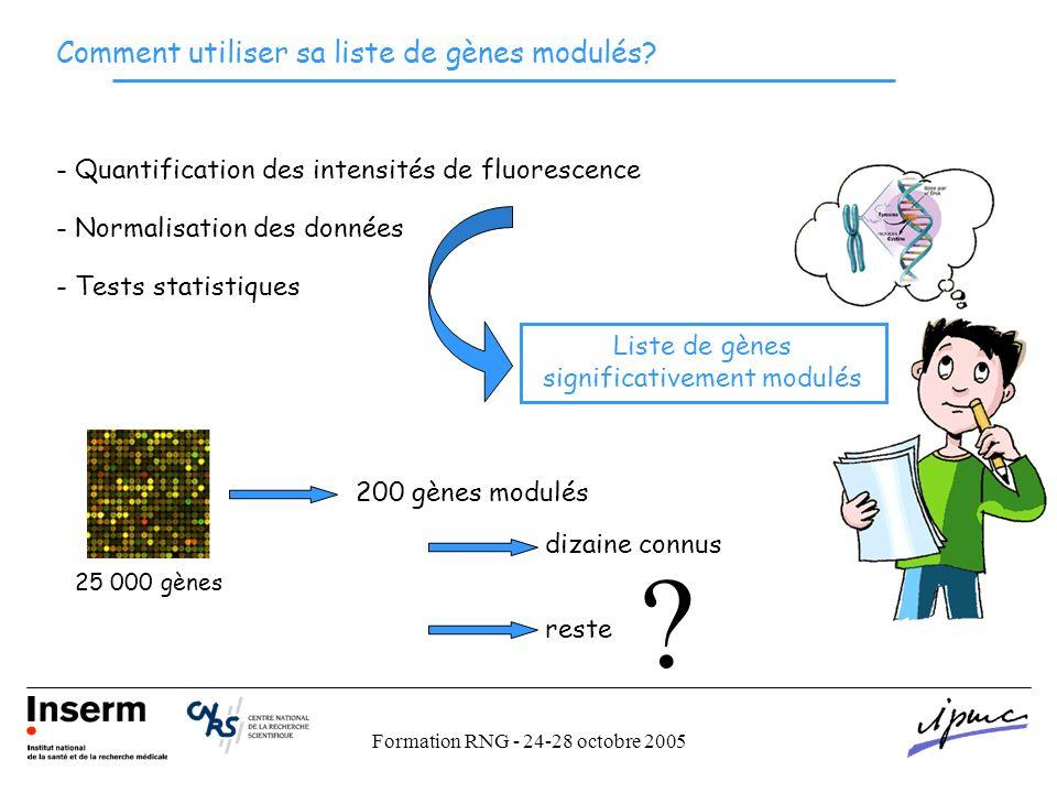 Formation RNG - 24-28 octobre 2005 - Quantification des intensités de fluorescence - Normalisation des données - Tests statistiques Liste de gènes significativement modulés 25 000 gènes 200 gènes modulés dizaine connus reste Comment utiliser sa liste de gènes modulés