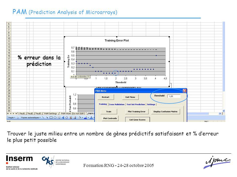 Formation RNG - 24-28 octobre 2005 PAM (Prediction Analysis of Microarrays) % erreur dans la prédiction Trouver le juste milieu entre un nombre de gènes prédictifs satisfaisant et % derreur le plus petit possible