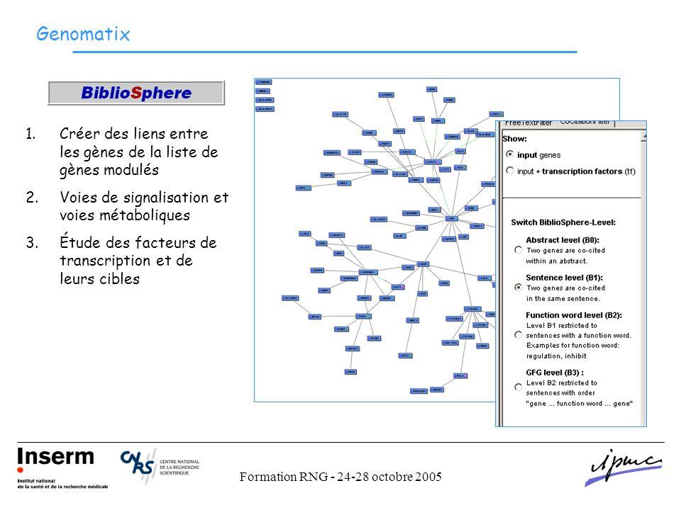 Formation RNG - 24-28 octobre 2005 Genomatix 1.Créer des liens entre les gènes de la liste de gènes modulés 2.Voies de signalisation et voies métaboliques 3.Étude des facteurs de transcription et de leurs cibles