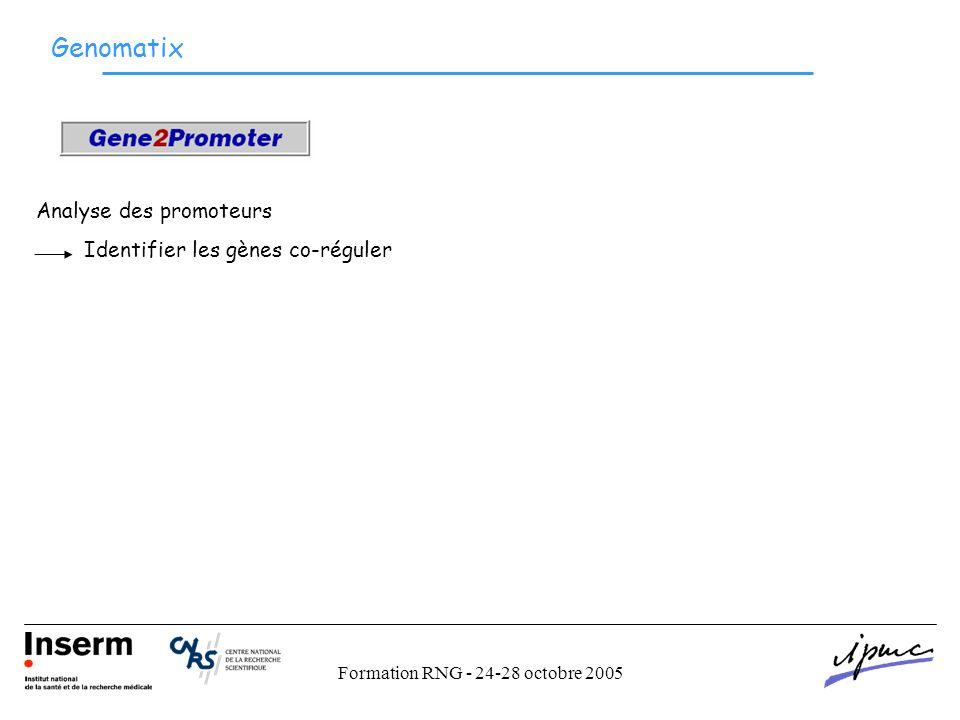 Formation RNG - 24-28 octobre 2005 Genomatix Analyse des promoteurs Identifier les gènes co-réguler