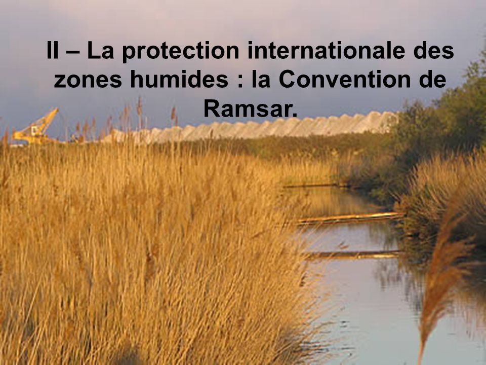 II – La protection internationale des zones humides : la Convention de Ramsar.