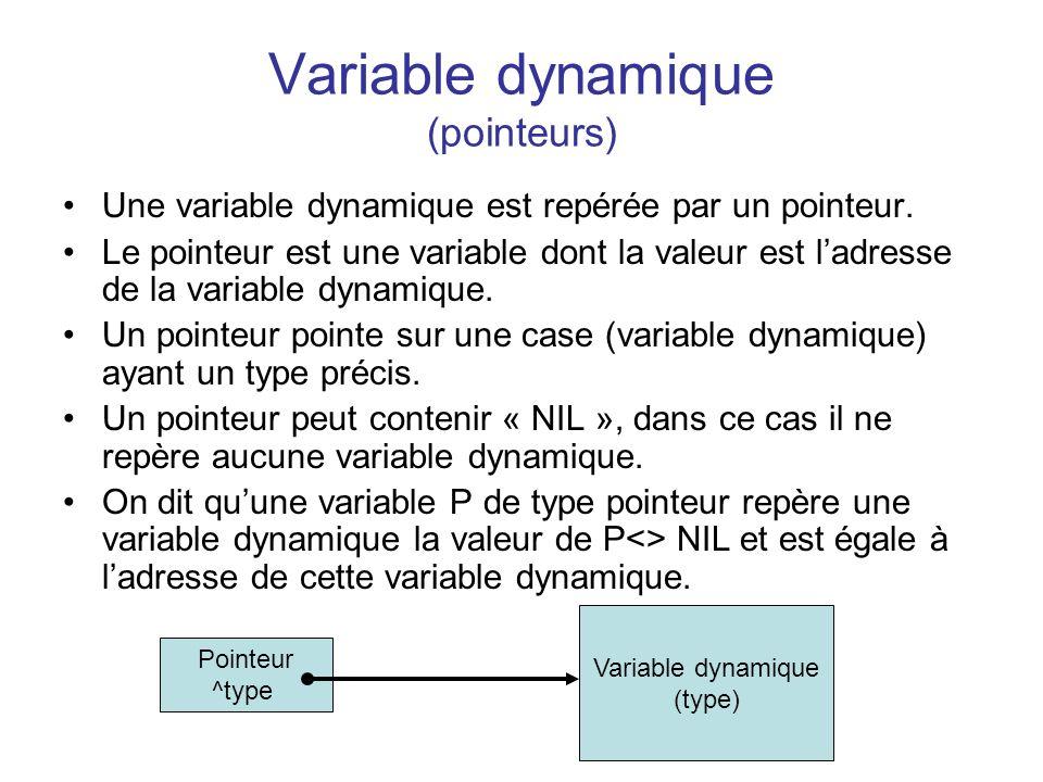Variable dynamique (pointeurs) Une variable dynamique est repérée par un pointeur. Le pointeur est une variable dont la valeur est ladresse de la vari
