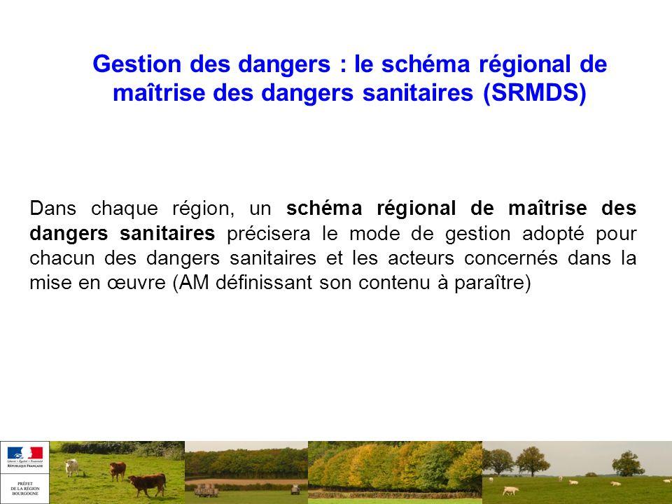 Gestion des dangers : le schéma régional de maîtrise des dangers sanitaires (SRMDS) Dans chaque région, un schéma régional de maîtrise des dangers san