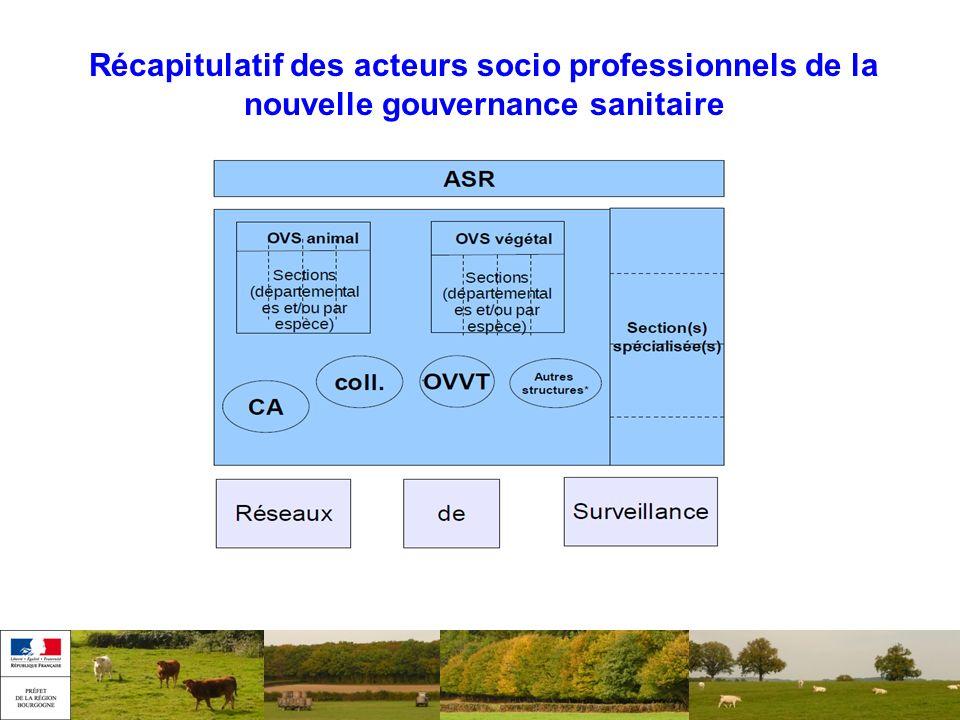 Plan de la présentation Récapitulatif des acteurs socio professionnels de la nouvelle gouvernance sanitaire