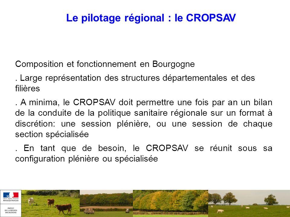 Le pilotage régional : le CROPSAV Composition et fonctionnement en Bourgogne. Large représentation des structures départementales et des filières. A m