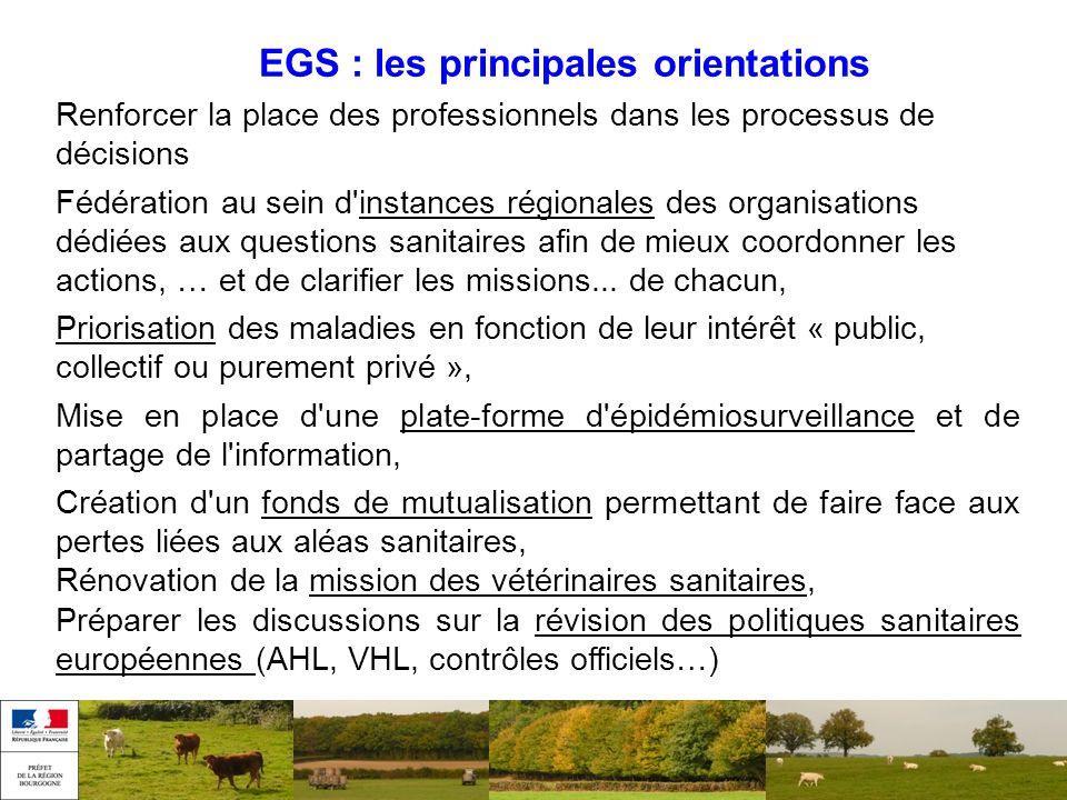 EGS : les principales orientations Renforcer la place des professionnels dans les processus de décisions Fédération au sein d'instances régionales des