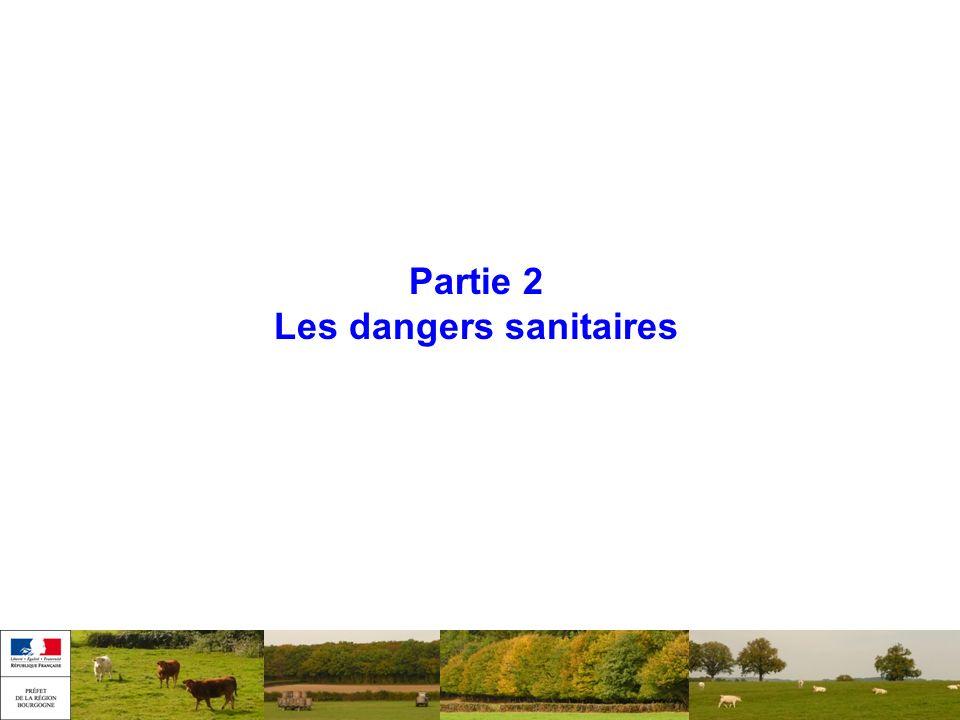 Partie 2 Les dangers sanitaires
