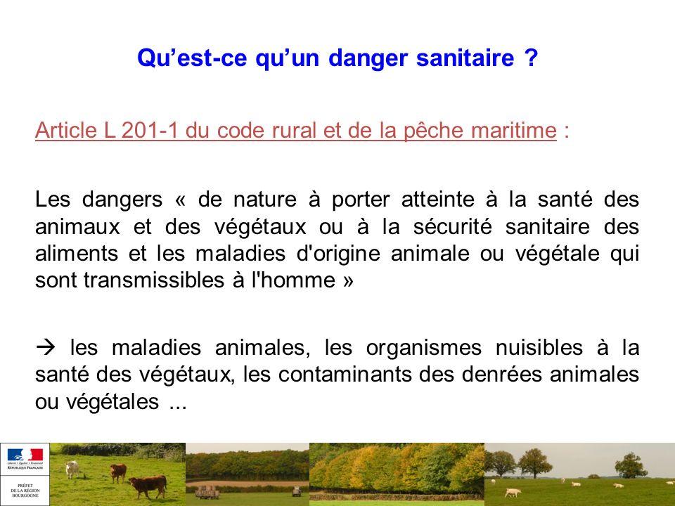 Quest-ce quun danger sanitaire ? Article L 201-1 du code rural et de la pêche maritime : Les dangers « de nature à porter atteinte à la santé des anim