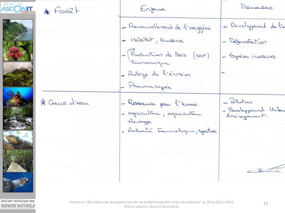 Formation (Re)-découvrez les espaces naturels de la Martinique pour mieux les préserver du 25 au 29 juin 2012 Marion Labeille – Asconit Consultants 11 Liste des principales menaces