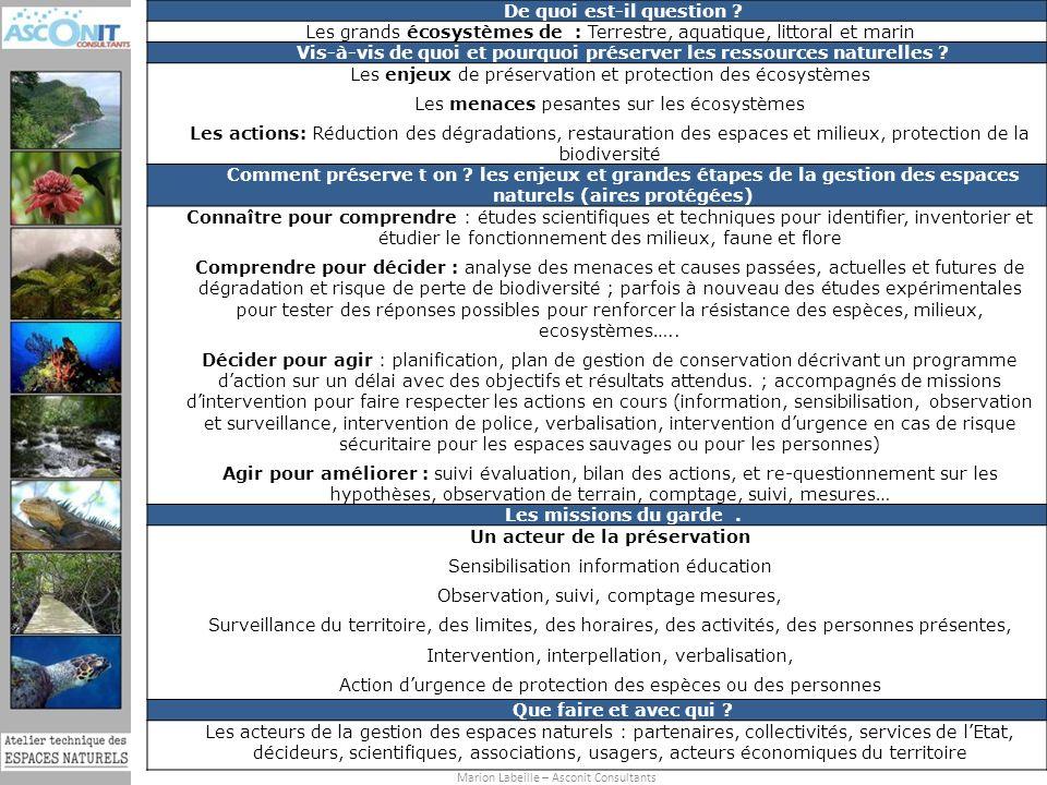 Formation (Re)-découvrez les espaces naturels de la Martinique pour mieux les préserver du 25 au 29 juin 2012 Marion Labeille – Asconit Consultants 13 De quoi est-il question .