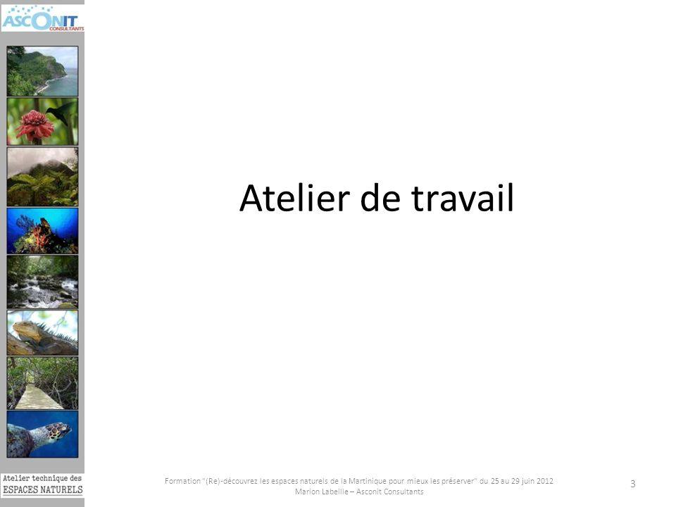 Formation (Re)-découvrez les espaces naturels de la Martinique pour mieux les préserver du 25 au 29 juin 2012 Marion Labeille – Asconit Consultants 3 Atelier de travail